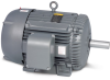 Pump AC Motors -- M2333