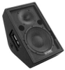 Compact 2-way, 10-in stage monitor/PA -- SM109z