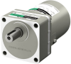 Induction Gear Motor -- 5IK100VES-100 - Image