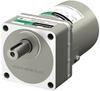 Induction Gear Motor -- 5IK60VES-18A -Image