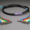 PROFlex Video Cable 5Ch 3C BNCP-BNCP 10' -- 305VS3C-BB-010