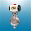 High Performance Butterfly Valves -- View Larger Image