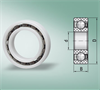 Radial Plastic Bearings for Dry, Wet, Washdown, Corrosive, Chemical Environments (Metric) -- 16008-PGP