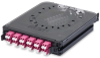 LAN Fiber Splice Cassettes, OM4 -- FC4X06LDFS -Image
