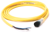 889 DC Micro Cable -- 889D-B4AC-2 -Image