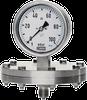 DPF76 - SS Diaphragm Pressure Gauge - Image