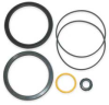 Cylinder Repair Kit,Dayton 2 In Bore -- 2ZB73
