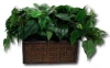 Wireless Covert Plant Hidden Camera