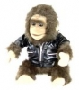 Wireless Monkey hidden camera