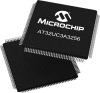 Microcontrollers, mTouch -- AT32UC3A3256