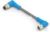 M8/M12 Cable Assemblies -- T4052224003-003 -Image