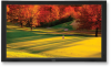 """46"""" Business-Grade Large-Screen Display -- S461 -- View Larger Image"""
