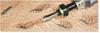 Insert Bits -- Tamper Resistant Torx® - Image