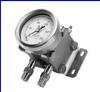 Pressure gauge -- DG