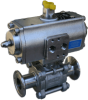 Sanitary Ball Valve -- IS-3TC Series
