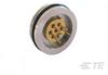 Uncompensated Pressure Sensor -- 82U