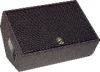 15 Inch 2-way Floor Monitor -- CM15V