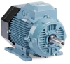 ABB IEC Low Voltage Motors -- General Performance