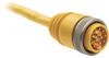 889 Mini Cable -- 889N-F12ACNU-1 -Image