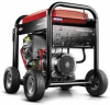Briggs & Stratton Professional 30337 - 8000 Watt Generator -- Model 30337