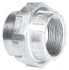 Explosionproof Standard Conduit Union -- UNF250R