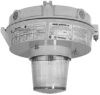 Vaporproof Incandescent Fixture with Globe and Guard -- MLCI152G1GLB - Image