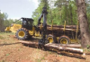 564 Forwarder -- 564 Forwarder