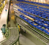 Material Handling Conveyor Systems