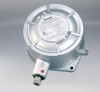 Series B1X & B2X Explosion Proof Mechanical Pressure Switches - Image