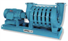Vacuum Pumps & Systems