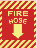 Signs : Warning/Egress/Fire/Danger/Etc. : Photoluminescent -- PPS1209G012