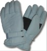 Ladies Taslon Ski Glove.THINSULATE