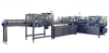 Case/Tray Packer -- DPM-2000