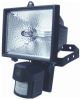 Motion Floodlight Color Covert Camera 480 TVL -- ESFL-X480