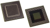 IC, FIXED-PT DSP 64BIT 500MHZ FC/CSP-548 -- 54K1455 - Image