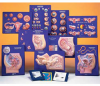 Master Set of Human Reproductive System Models -- AM2614