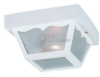 Two-Light Outdoor Ceiling Light Fixture -- 7569-15