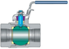 VEE-2000 End-entry Ball Valves