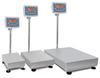 Miras® Platform Scale -Image