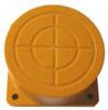 Proximity Sensors, Inductive Proximity Switches -- PIA-F80-002 -Image