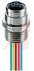 Connector, M12 Micro, Receptacle, Female, 4 Pole, 0.5 Meter Cable -- 70051088
