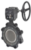 Butterfly Valve -- F6125-150SHP+GW12 -- View Larger Image