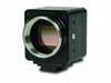Low Light Camera -- NOCTURN HD-SDI