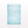 Sterilizable Pouch, Self-Seal, Blue Tint -- 91221 -- View Larger Image