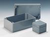 Polyester Standard Enclosure -- 02060603 00 - Image