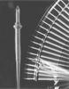 Passive Voltage Probes -- P3010