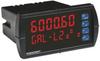 Programmable Panel Meters -- DM61