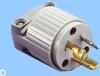 NEMA L5-15 Plug -- 88020250