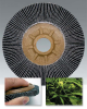 TRIMTEX® Flap Disc -- 93704 - Image