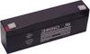 AVI VOLUMETRIC PUMP battery (replacement) -- BB-038812
